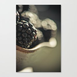 Blackberries 1 Canvas Print