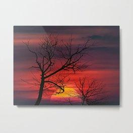 Sunset Nature Scene Metal Print