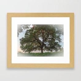Southern Morning Framed Art Print