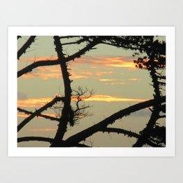 SUNSET BETWEEN A TREE Art Print