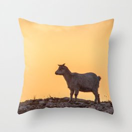 Goat baby sunset E5-5789 Throw Pillow
