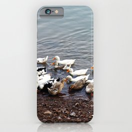 A Flock of ducks on the Mekong River Bank iPhone Case
