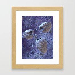 Propogator Framed Art Print