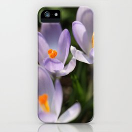 Crocus flowers iPhone Case