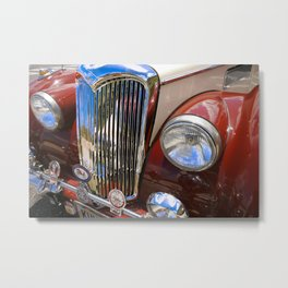 Red Hawaiian & Blue Metal Print