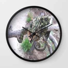 Colourful Chameleon Wrapped Around A Branch Wall Clock