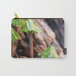 Gleditsia Triacanthos - Honeylocust Carry-All Pouch