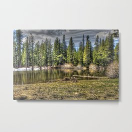 Reflecting Pond at Carson Spur, Amador County CA Metal Print
