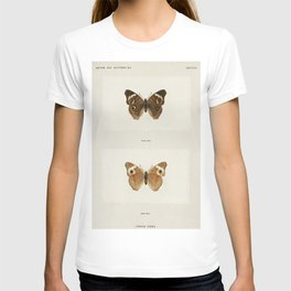 Buckeye (Junonia Coenia) from Moths and butterflies of the United States (1900) by Sherman F Denton T-shirt