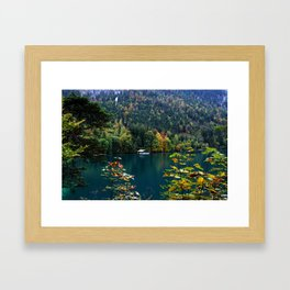 Alpsee Framed Art Print