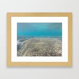 fishy fishy fishy, can't you sea Framed Art Print