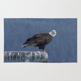 Bald Eagle of Resurrection Bay, No. 2 Rug