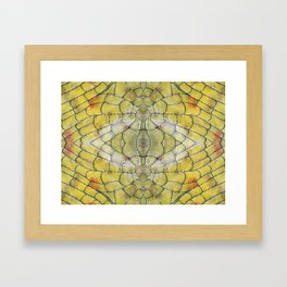 Cell Structure  Framed Art Print