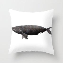 Northern right whale (Eubalaena glacialis) Throw Pillow