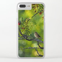 Fly-catching Clear iPhone Case