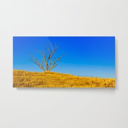 The Dry Country Metal Print