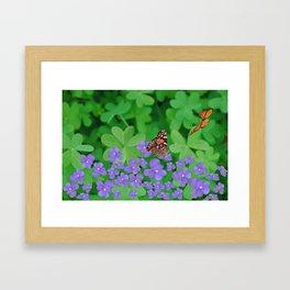Butterfies, Violets & clover Framed Art Print