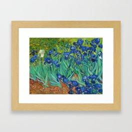 Irises by Vincent van Gogh (May 1889) Framed Art Print