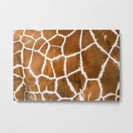 Giraffe skin real modern pattern close up view Metal Print