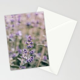 I'll Let You In My Dreams Stationery Cards