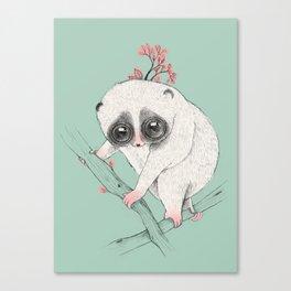 Fat Loris! Canvas Print