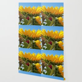 A Summer Bouquet 17 - sunflowers, roses and cockscomb Wallpaper
