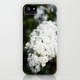 Deutzia White Spring Blossoms iPhone Case