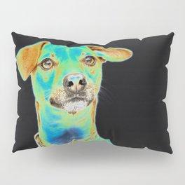 Green Dog Pillow Sham