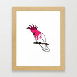 Parrot no.3 Framed Art Print