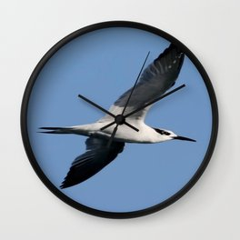 Sandwich Tern In Flight Vector Wall Clock