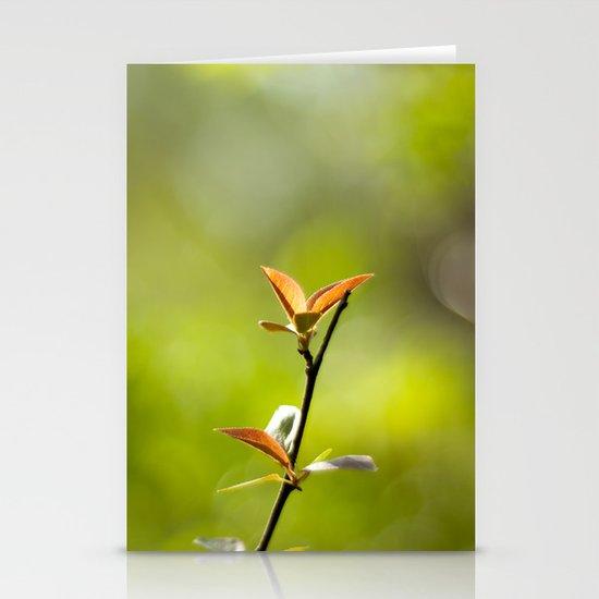 Spring Begins Stationery Cards