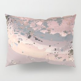 Dust 02 - Post Biological Universe Pillow Sham