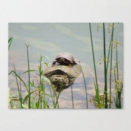 Turtleback Ride Canvas Print