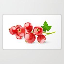 Red currants Art Print