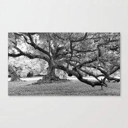 Tree of Life The De Bore Oak 1740 Canvas Print