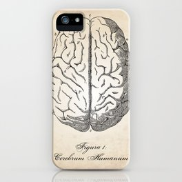 Human Anatomy Brain Art Print iPhone Case