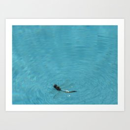 BUG ON THE WATER Art Print