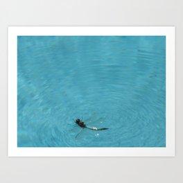BUG ON THE WATER Art Print