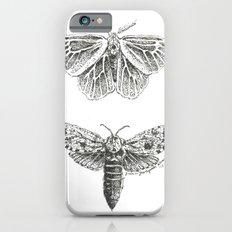 Moth Study iPhone 6s Slim Case