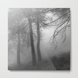 """""""Dream forest BW"""". Living in a dream... Metal Print"""