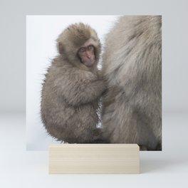 Baby Snow Monkey Hitchin' a Ride Mini Art Print