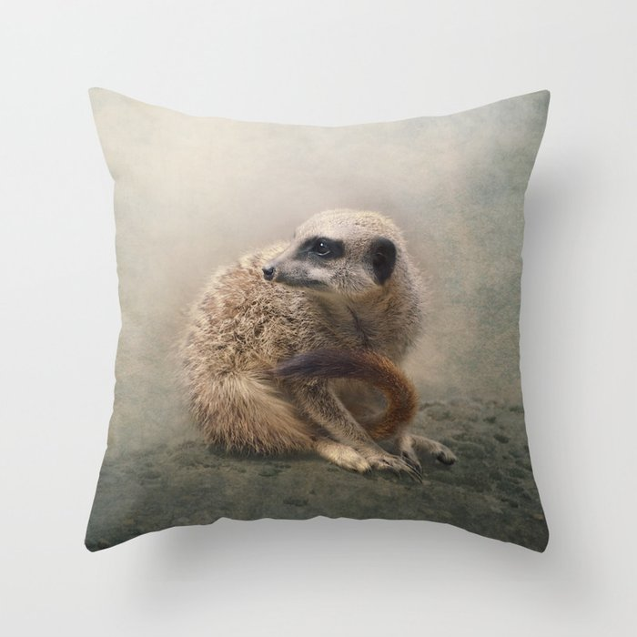 Study Of A Young Meerkat Throw Pillow By Polly470 Society6