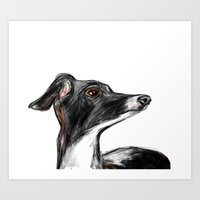 italian Art Prints featuring Italian Greyhound by James Peart