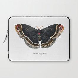 Calleta Silkmoth  (Eupackardia calleta) Laptop Sleeve