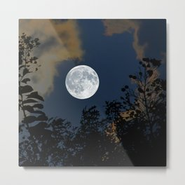 Moon Glo Metal Print