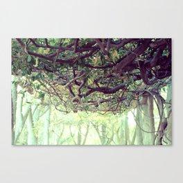 Tangled Canvas Print