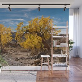Autumn - Little_Wild_Horse_Canyon Trail, Utah Wall Mural