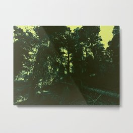 undergrowth Metal Print