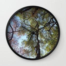 Dos Picos Ramona Oak Tree Wall Clock