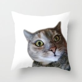 Confused cat Throw Pillow